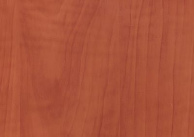 Яблоня Толедо